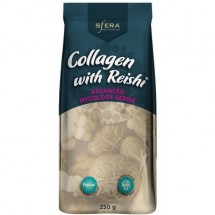 Peptain Collagen with Reishi 250g
